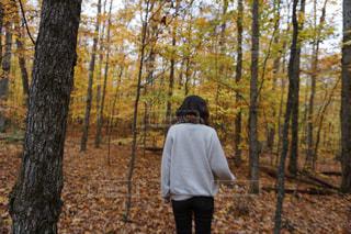 森の横に立っている人の写真・画像素材[1638638]