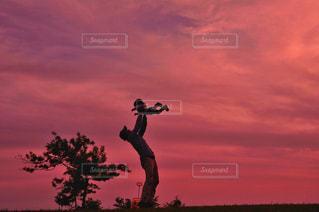 夕陽に舞うの写真・画像素材[2184577]