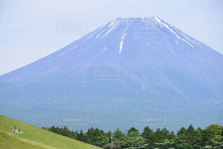 富士山を望む広大な草原をソリで滑るの写真・画像素材[4462977]