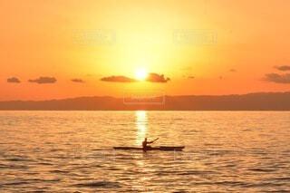 夕日に照らされての写真・画像素材[4833709]