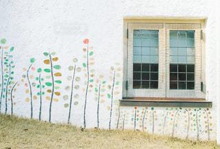 花の写真・画像素材[473951]