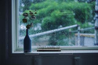 雨の写真・画像素材[582853]