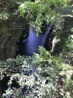 森の中の大きな滝の写真・画像素材[1196394]
