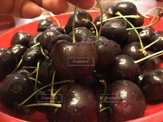 アメリカ,フルーツ,可愛い,美味しい,ブラックベリー,コロラド州