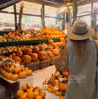 かぼちゃの国の写真・画像素材[2569106]