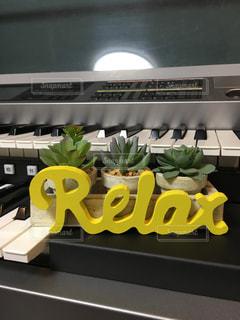 黄色,リラックス,音楽,教室,鍵盤,サボテン,キーボード,黄