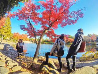 木の隣に立っている人のグループの写真・画像素材[881094]