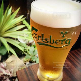 ビール - No.319580