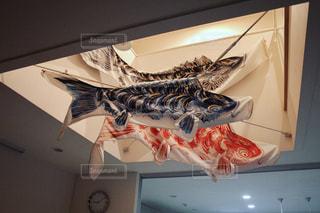 鯉のぼり - No.461171