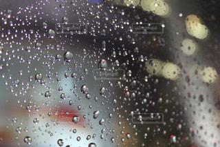 雨粒の写真・画像素材[815950]