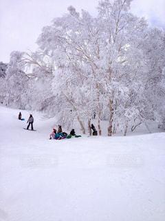 雪景色の写真・画像素材[931743]