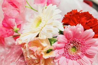 花束💐の写真・画像素材[1436721]