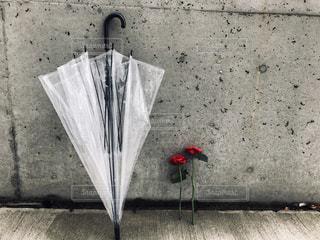 雨,傘,水,薔薇,雷,雫,梅雨,天気,ビニール傘,雨の日,ゲリラ豪雨,ブロッサム