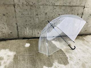 雨,傘,水,バラ,季節,薔薇,雫,梅雨,天気,レインコート,ビニール傘,雨の日,クラウド,ゲリラ豪雨,ばら,ガーデン,しまなみ,ブロッサム,エリア