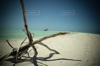 水の体の横にある砂浜のビーチの写真・画像素材[808783]