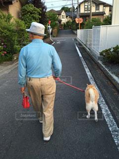 散歩の写真・画像素材[452044]
