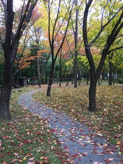 札幌,サッポロファクトリー,旧永山武四郎邸(永山記念公園),地下鉄バスセンター駅