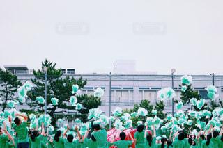 咲き誇れ!の写真・画像素材[764956]