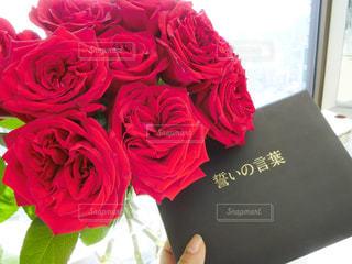 ピンクの花の花束 - No.798875