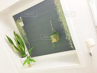 テーブルの上の花の花瓶 - No.1008400