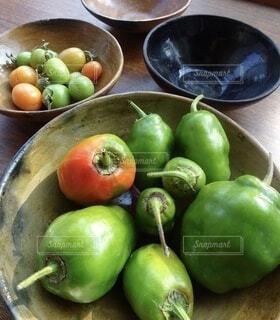 庭で採れた野菜達の写真・画像素材[3697082]