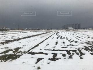 雪,白,道路,足跡,地面,通り,雪道