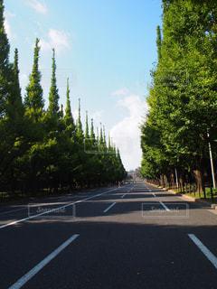 道の端にサインの写真・画像素材[1044258]