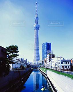 東京の写真・画像素材[591189]