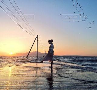 海と夕日とわたりどりの写真・画像素材[172319]