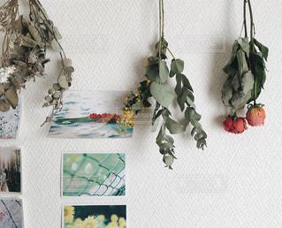 写真やお花の飾ってある部屋の写真・画像素材[1420370]
