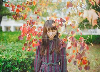 紅葉と秋コーデの写真・画像素材[1581543]