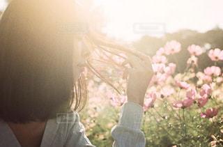 光に透ける髪と女性の写真・画像素材[1618083]