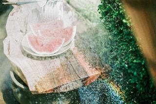 スイカの水浴びの写真・画像素材[3500717]