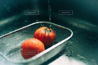 新鮮トマトの写真・画像素材[4657051]