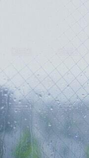 雨が降っている様子の写真・画像素材[4643453]