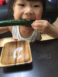 野菜の写真・画像素材[537646]