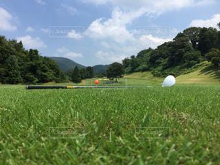ゴルフ - No.282580