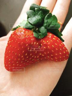 赤,かわいい,いちご,苺,フルーツ,果物,イチゴ