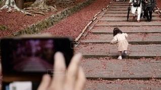 京都・毘沙門堂の階段を頑張って登る小さな女の子とその様子を撮影する父親の写真・画像素材[2793450]