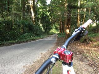 アウトドア,自転車,マウンテンバイク,サイクリング,林道,ツーリング,ポタリング