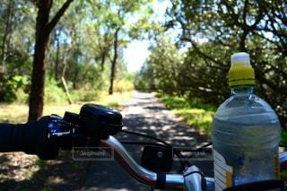 自転車の写真・画像素材[426666]