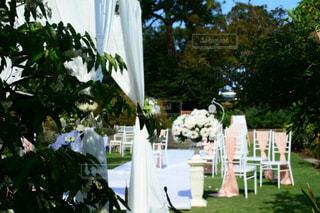 テーブルの上の花の花瓶の写真・画像素材[1227886]