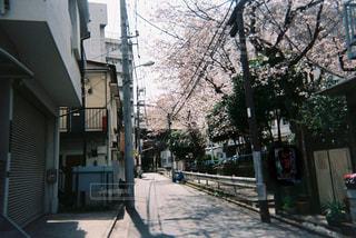 狭い街の通りの写真・画像素材[1233529]