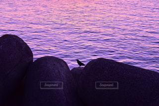 海の写真・画像素材[302192]