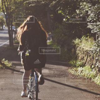自転車,緑,女子,日本,サイクリング,軽井沢,陽射し