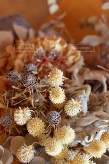 花,植物,ドライフラワー,オシャレ,フラワーアレンジ