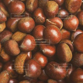 食べ物,秋,栗,食,秋の味覚,食欲の秋