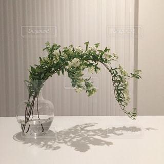 テーブルの上の花の花瓶の写真・画像素材[1377834]