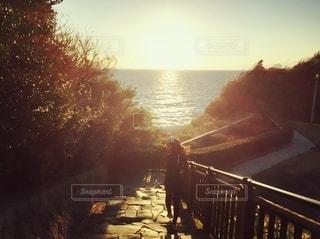 フェンスの上の夕日の写真・画像素材[2740113]