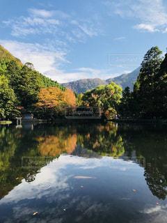 木々 に囲まれた水の体の写真・画像素材[850042]